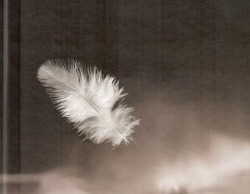 Аудиорассказ Белая ворона слушать онлайн