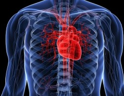 «Самые большие раны человеку наносятся дома!»<br/>Беседа с кардиологом Александром Недоступом