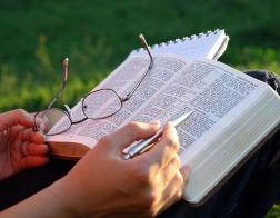 О «противоречиях Библии» и нехристианском образовании<br/>Как толковал Писание святитель Григорий Нисский