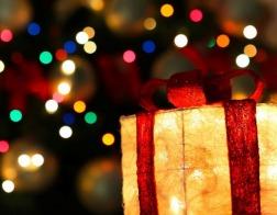 Акция «Рождественский круговорот» стартовала на Лепельщине