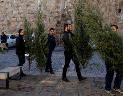 Израильские раввины считают рождественское дерево языческим атрибутом
