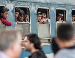 США приостановили прием беженцев из семи исламских стран