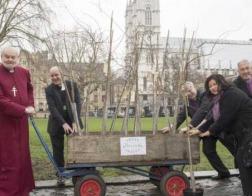 Лондонские церкви высаживают деревья, чтобы сделать город зеленым
