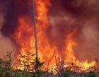 В Канской епархии объявлен сбор помощи для пострадавших от пожаров