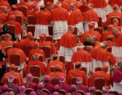 30 кардиналов выражали сомнения относительно