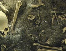 Найденные в Перу скелеты рассказали ученым о страшном древнем ритуале