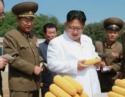 Библии контрабандой провозят в Северную Корею
