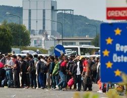 В Австрии 75 % новообращенных католиков — мигранты-выходцы из мусульманских стран