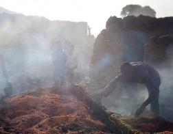 Исламисты из «Боко-Харам» совершили новое нападение на христианские деревни в Камеруне
