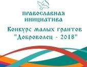 Определены победители конкурса малых грантов «Доброволец — 2018»