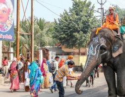 В Индии совершен набег на католическую больницу