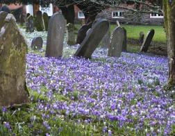 Церковь Англии пытается усмирить страсти вокруг продажи кладбища под автостоянку
