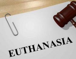 Парламент Португалии отверг предложение о легализации эвтаназии