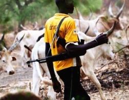 В Нигерии пастухи напали на католическую семинарию и ранили священника